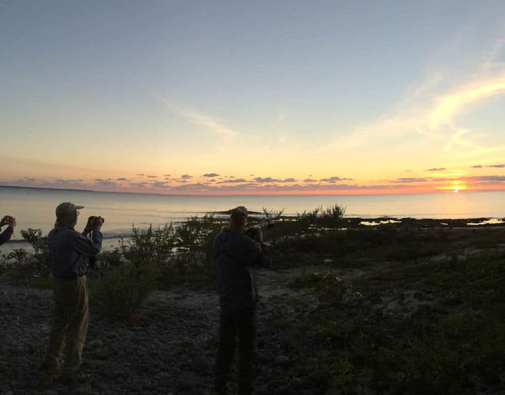 sunset with birders